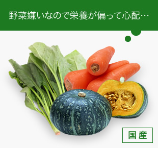 野菜嫌いなので栄養が偏って心配・・・